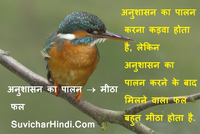 Slogans on Discipline in Hindi