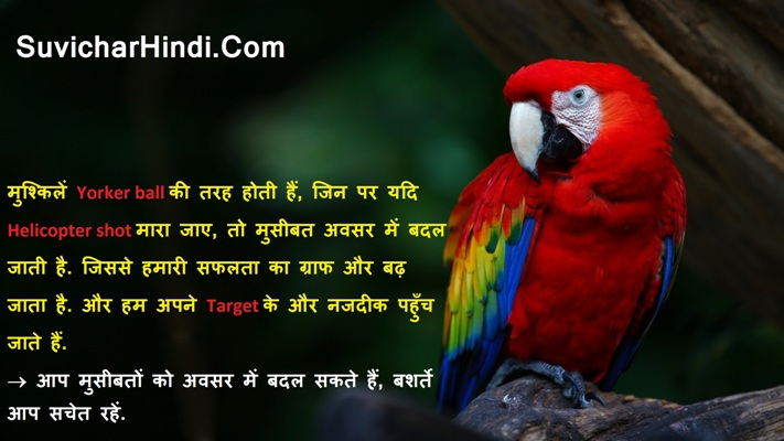 21 अनमोल वचन विचार Anmol Vachan in Hindi Language Wallpapers Image Msg