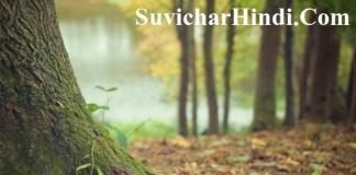 13 दर्द भरी शायरी हिन्दी शेरो शायरी फोटो dard shari shayari in hindi with images
