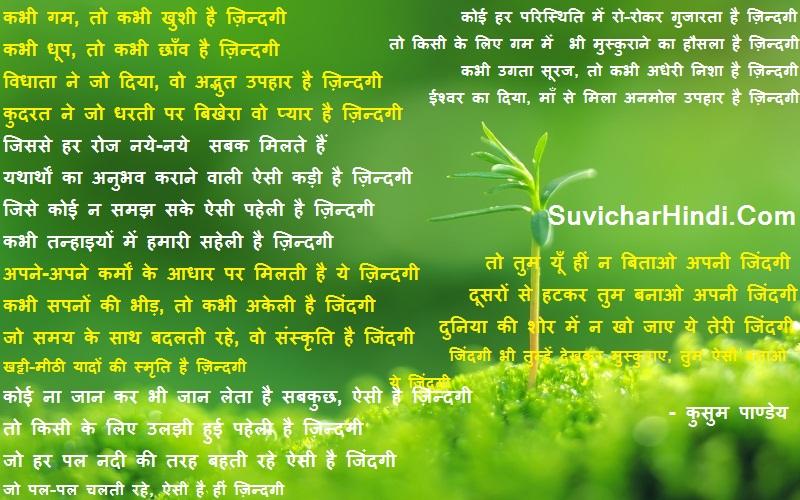 Hindi Poems on Life - ज़िन्दगी