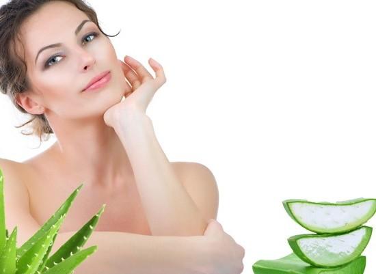 Aloe Vera Juice Benefits in Hindi - Aloe Vera Juice Benefits in Hindi