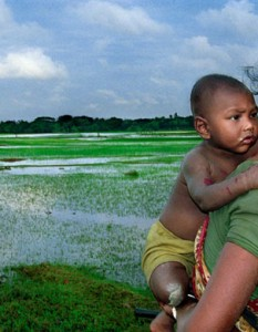 किसान पर कविता - Poem On Farmer in Hindi Language - Kisan Par kavita