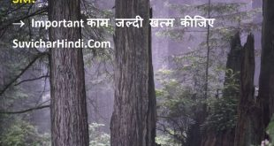 16 इम्पोर्टेन्ट थॉट हिन्दी में - Important Thoughts in Hindi Meaningful Valuable