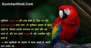 Beautiful 10 Anmol Vachan in Hindi wallpapers images - Free thoughts for students, quotes on life and love.