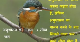 अनुशासन पर 19 स्लोगन Slogans on Discipline in Hindi Txt Messages