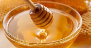 Benefits Of Honey in Hindi - Shahad Ke Fayde in Hindi - शहद के फायदे