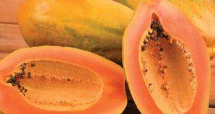23 Papaya Benefits in Hindi पपीता खाने के फायदे papita Ke fayde Leaf Seeds