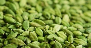 33 Elaichi Ke Fayde Hindi Me इलायची के फायदे Cardamom benefits in hindi