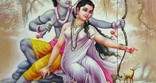 सीता का हरण नहीं हुआ, तो किसका हरण हुआ ! ramayan Sita Haran story in hindi