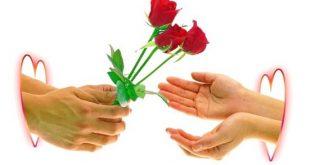 Rose Day Poem in Hindi - रोज डे पोएम इन हिन्दी || उस बन्द किताब में एक गुलाब