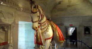 Maharana Pratap Horse Chetak History in Hindi    चेतक के वीरता की कहानी   `