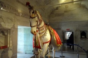 Maharana Pratap Horse Chetak History in Hindi || चेतक के वीरता की कहानी ||`