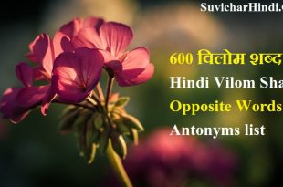 600 विलोम शब्द Hindi Vilom Shabd Dictionary opposite words antonyms list