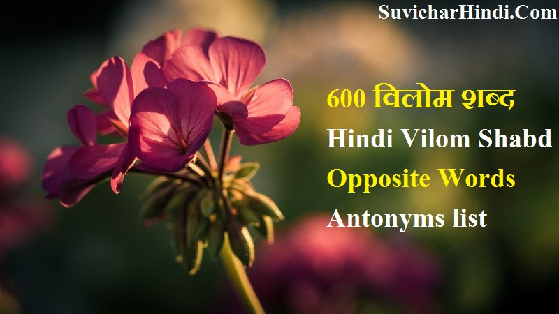 600 विलोम शब्द Hindi Vilom Shabd Dictionary