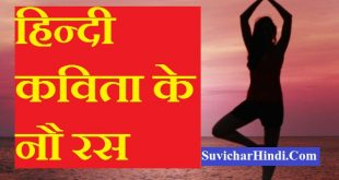 हिन्दी कविता के नौ रस - 9 Ras in Hindi Poetry kavita poems paribhasha with example
