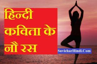 हिन्दी कविता के नौ रस - 9 Ras in Hindi Poetry kavita poems paribhasha with example