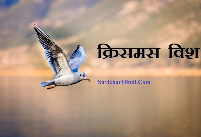 मेरी क्रिसमस शायरी विश इन हिंदी Merry Christmas Shayari in Hindi 140 Words wishes sms