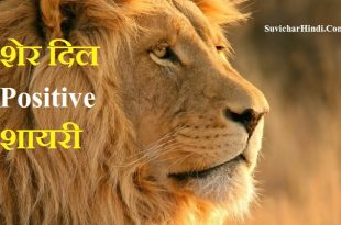 शेर दिल Positive शायरी Lion Shayari in Hindi status quotes :