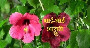 भाई-भाई शायरी हिंदी में - Bhai Bhai Shayari Hindi Mai Big Brother Shayari Status Quotes