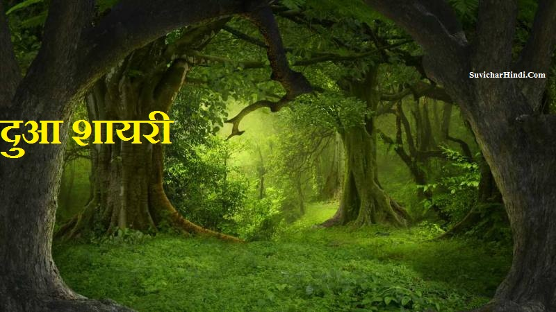 Blessing शायरी - Blessing Quotes in Hindi Shayari Status