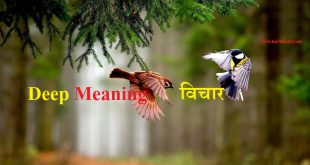 Deep Meaning शायरी - Deep Meaning Quotes in Hindi Shayari Status